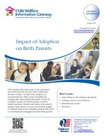 Impact of Adoption on Birth Parents